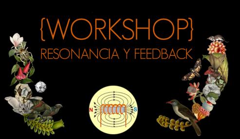 Workshop.head